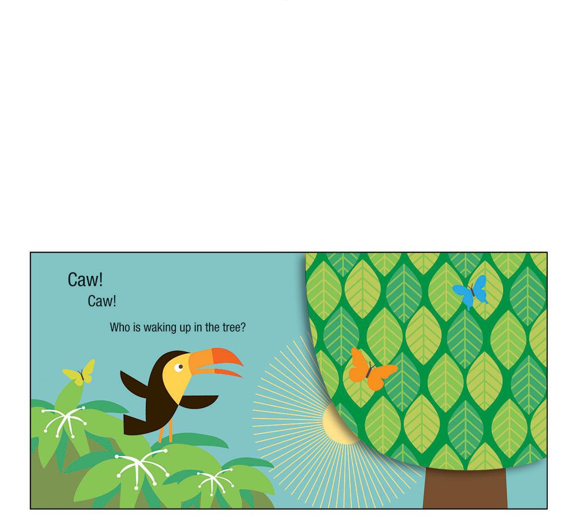 toucan 1
